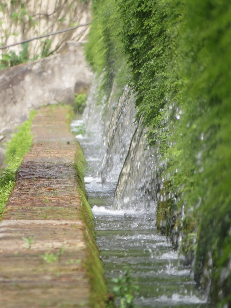 Moss covered fountains at Villa D'Este, Tivoli Italy. Outside of Rome